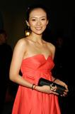ziyi zhang - Santa Barbara Film Society Benefit Gala 4xHQs